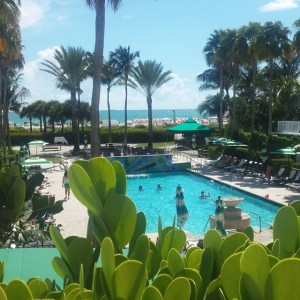 View from my room at the Surfcomber Hotel, Miami Beach