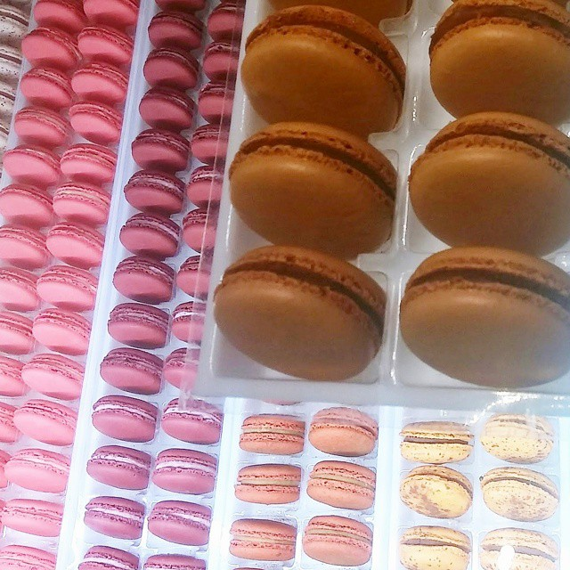 Macarons at Alliance Patisserie