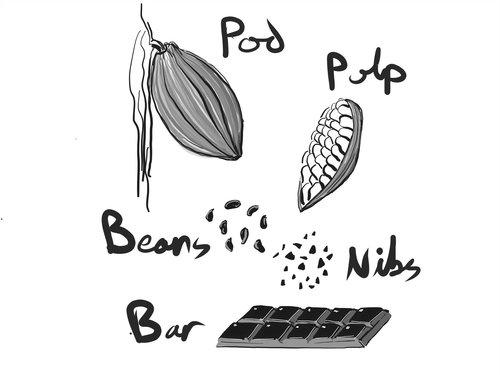 full-chocolate-graphic